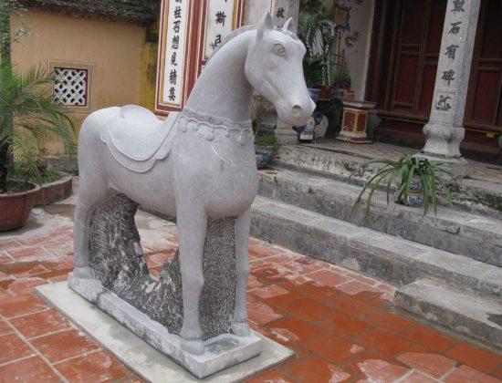 Ngựa là loài vật rất gần gũi và thân thuộc với con người